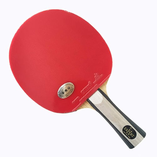 expensive ping pong paddle